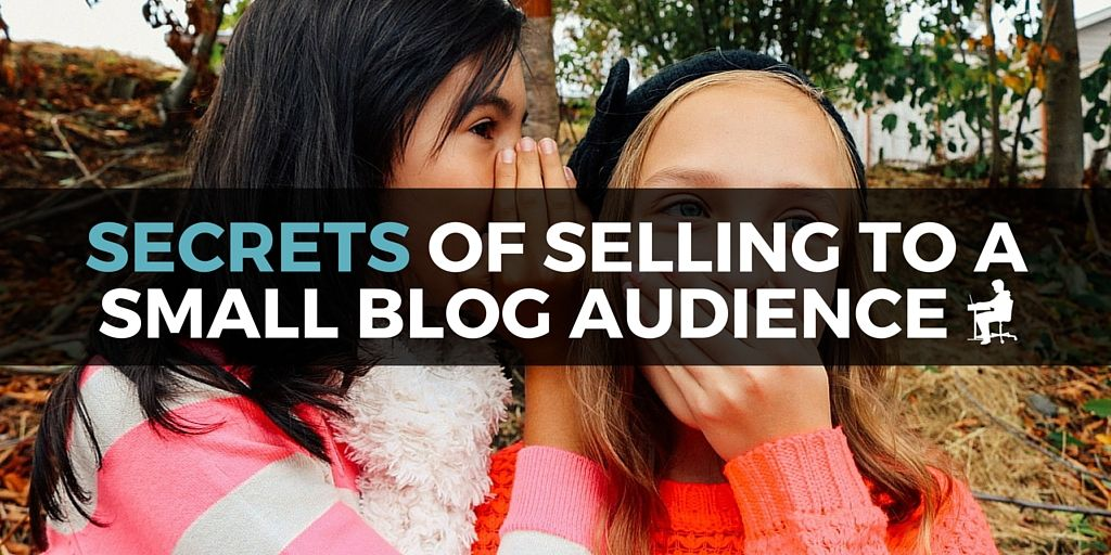 secrets of selling to a small blog audience